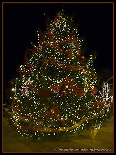 decorated outdoor Christmas tree on Lakeshore Drive in Oakville, Ontario