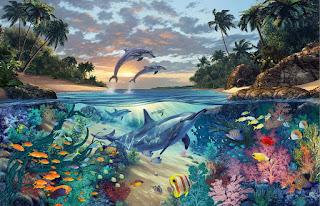 Paisajes Coralinos Acuaticos Peces y Delfines