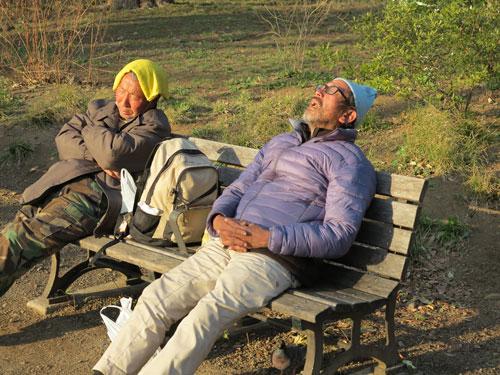 Homeless in Ueno Park, Tokyo, Japan