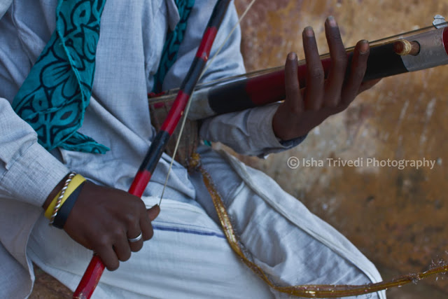 Chikara String Instrument - clicked by Isha Trivedi