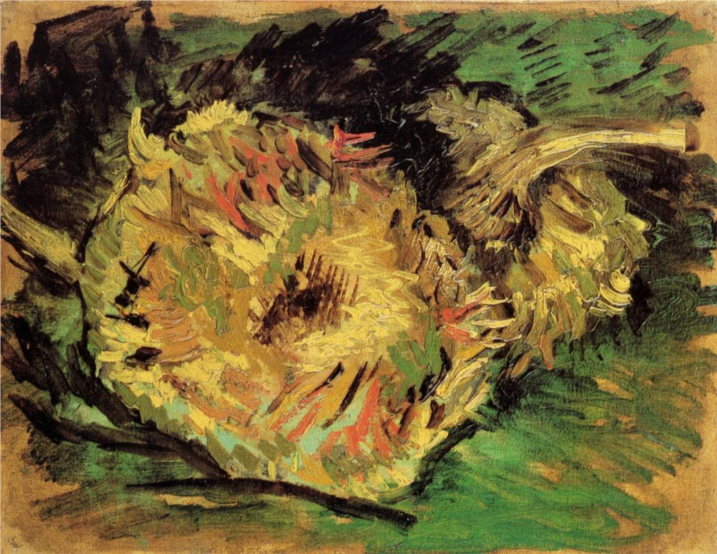 Gogh still life with two sunflowers vincent van gogh sunflowers