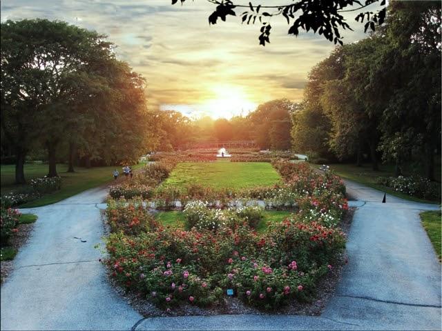 ohventures park  roses