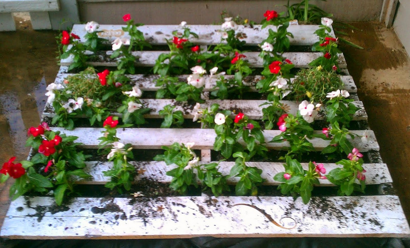 Zigzagzon jardines verticales con palets - Jardines verticales con palets ...