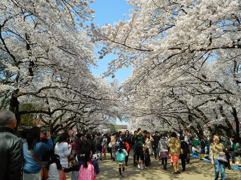 Ueno Park wisata terbaik jepang