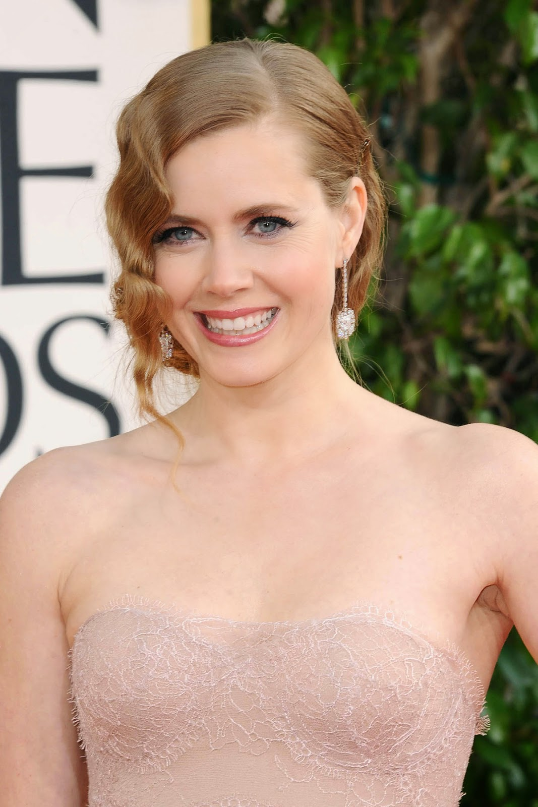 Latest Celebrity Photos: Amy Adams Hot and Sexy Wallpapers Amy Adams