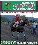 jueves, 28 de marzo de 2013 revista
