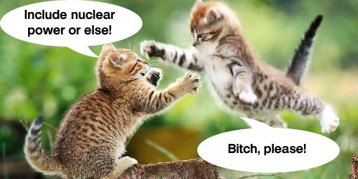 Cat+fight+Climate+bill.jpg