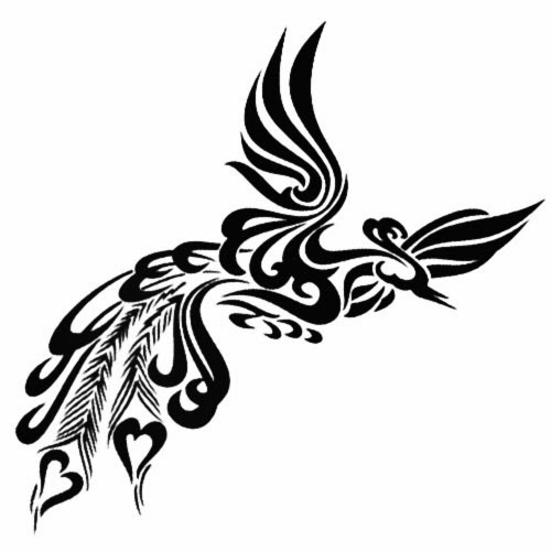 Phoenix long tail tribal tattoo stencil