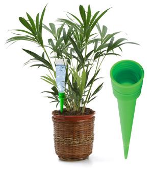 Bricoayudas mantener tus plantas regadas cuando te vas de for Plantas en agua interior