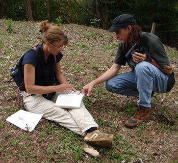 Jeffrey McCrary birdwatching Nicaragua