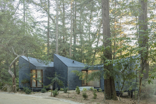 Picture of dark grey small modern house among the trees