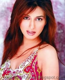 Top+Beautiful+Actress+in+Pakistan002