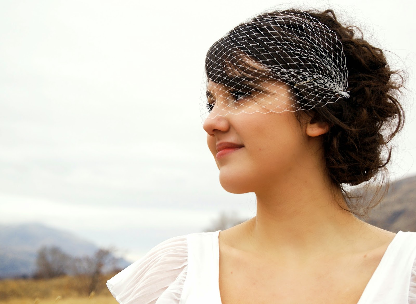 Melinda Rose Design: All about birdcage veils!!