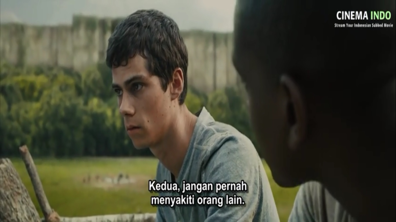 Kata Kata Mutiara Dalam Film The Maze Runner Kakak Satria Umang Umang