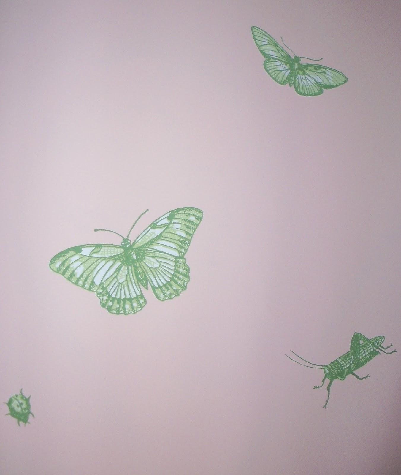 http://1.bp.blogspot.com/-0gfDUm-4Jhw/UA6KA9D_zRI/AAAAAAAABkM/fmdAF2iOtNE/s1600/18+Thibaut+Ladybug+Pink.JPG