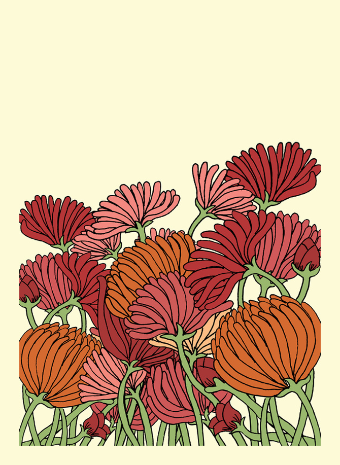 Daisy and Peony Flower Illustration Printed on Merchandise Illustration by Haidi Shabrina