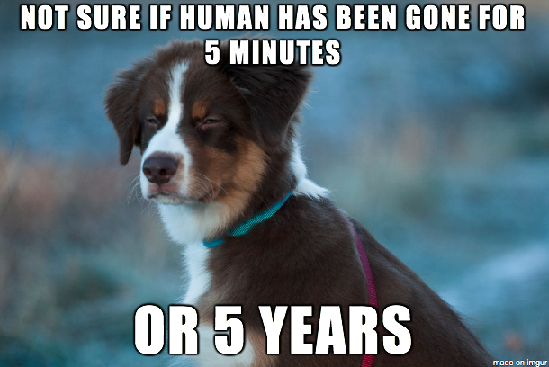 not sure if human has been gone for 5 minutes or 5 years