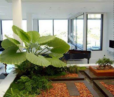 Decora el hogar jardines modernos para interior de casa for Jardines de hogar