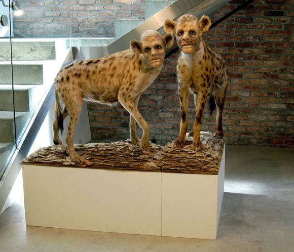 kate clark esculturas animais bizarros com rostos humanos