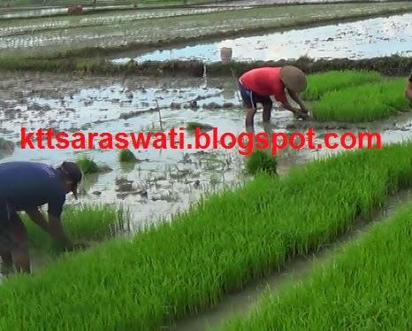 Pengertian Desa menurut UU RI No 6 Tahun 2014 tentang Desa