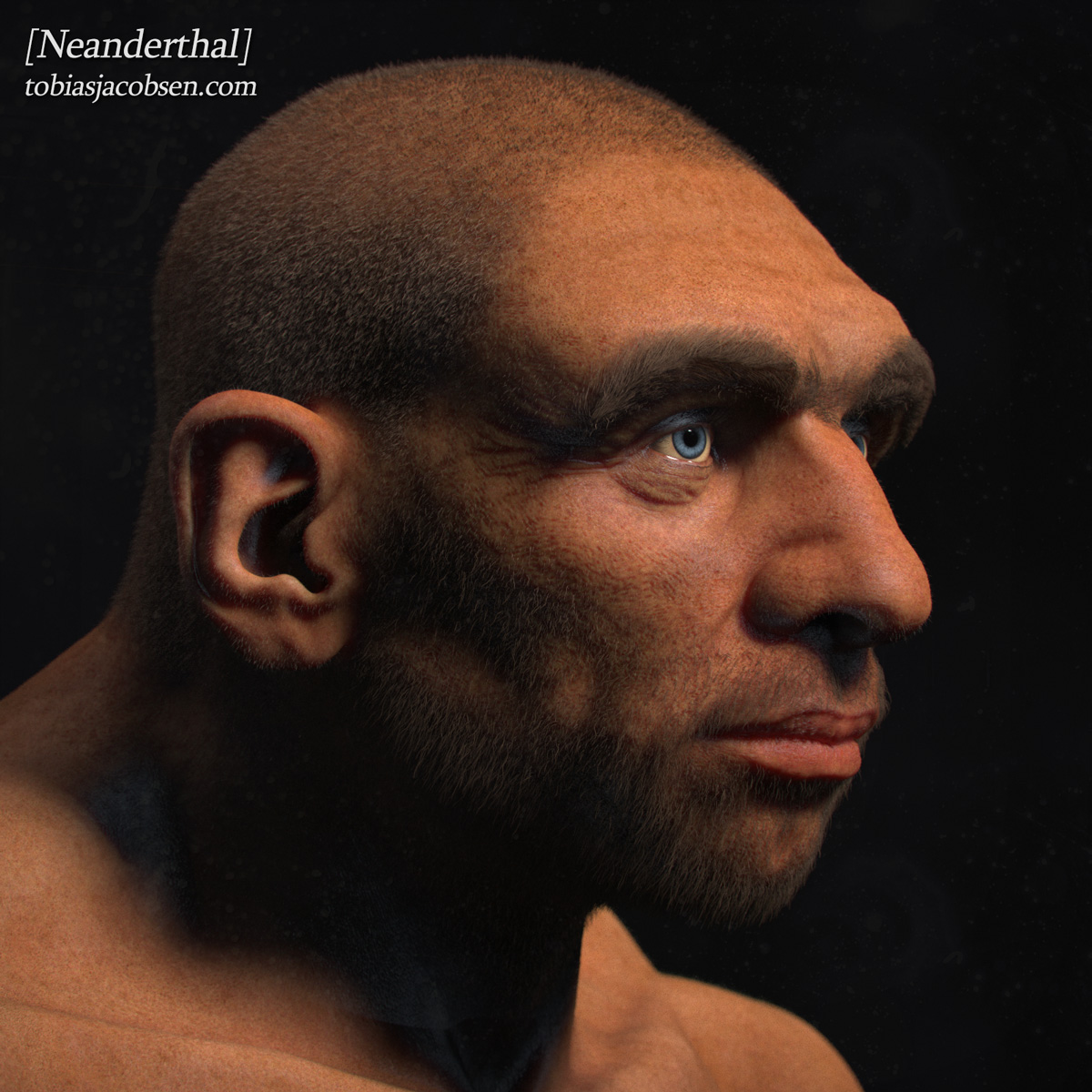 what did one neandertal say the Modern humans do not have neanderthal ancestors in their family trees   between neanderthals and modern humans, said william goodwin,.