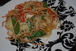 Vegetable Lo Mein with Chicken