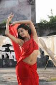 Surveen Chawla Hot Photos-thumbnail-4