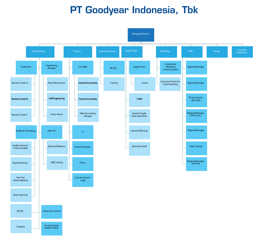bagan struktur organisasi goodyear indonesia