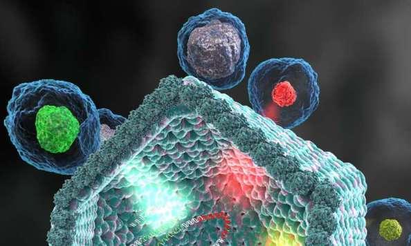 Ανακαλύφθηκε μια νέα ομάδα γιγάντιων ιών