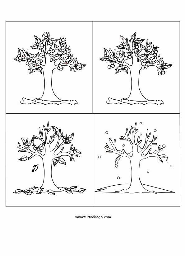 Maestra marzia soranzo l 39 albero delle quattro stagioni da - Immagine dell albero a colori ...