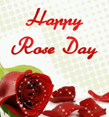 Happy Rose Day Wallpapers 2014