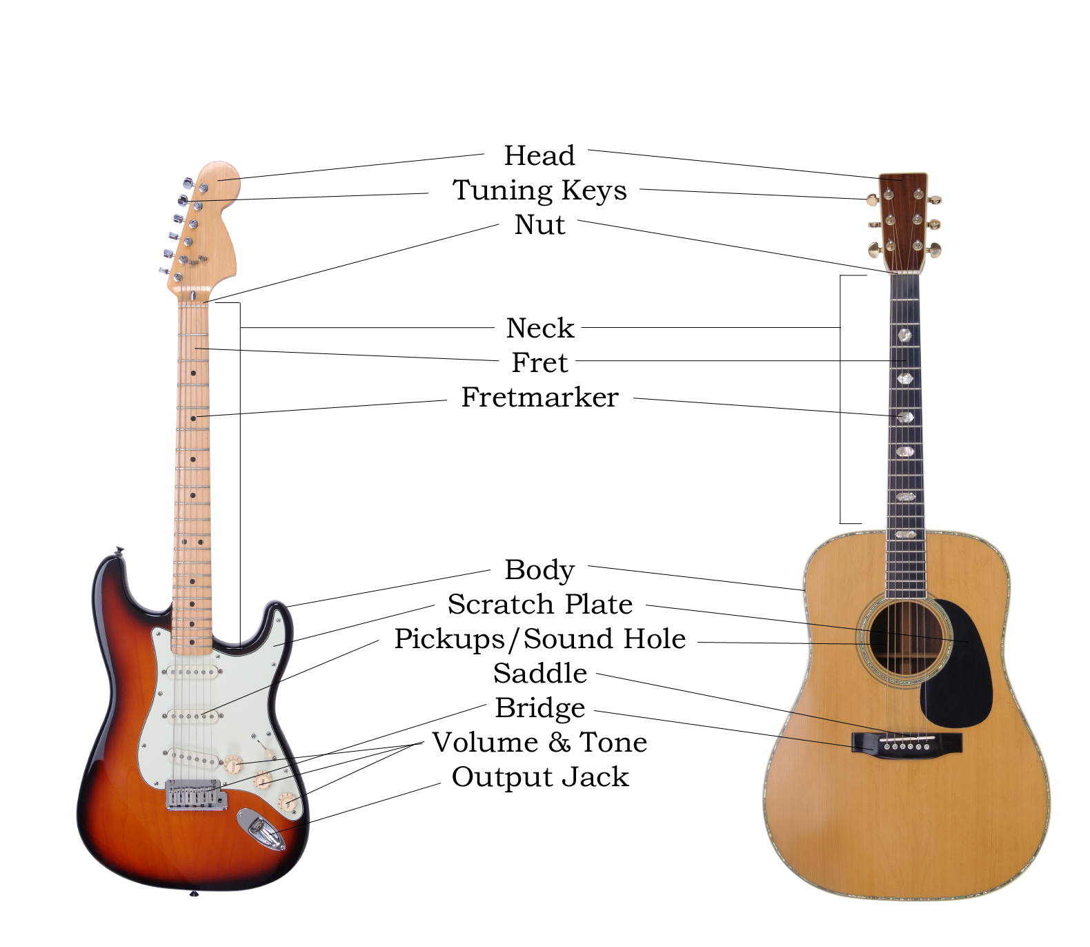 Guitar HomeStudy: Anatomy of the Guitar