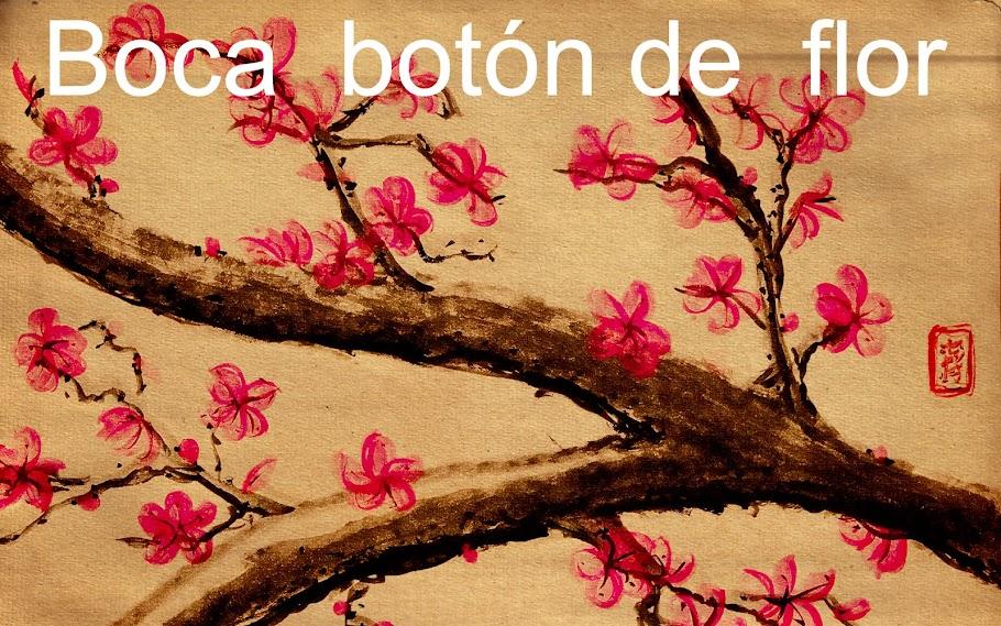 Boca Botón de Flor
