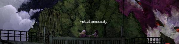 Virtual Meinsanity