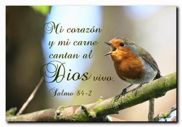 Te amo querido Dios
