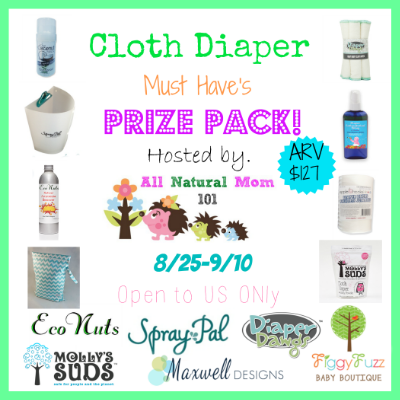 Cloth Diaper Must Have's Giveaway