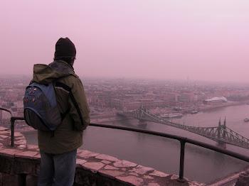 Nella zona del castello di Budapest (2011)