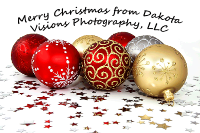 Christmas Ornaments, sparkly stars, glitter, Christmas wishes, Black Hills Photography