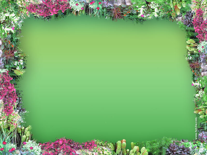 And Border Frame Free Clip Art Flowers