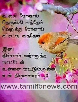 Love Failure Tamil Kavithai Photo - விலகி போனாய்