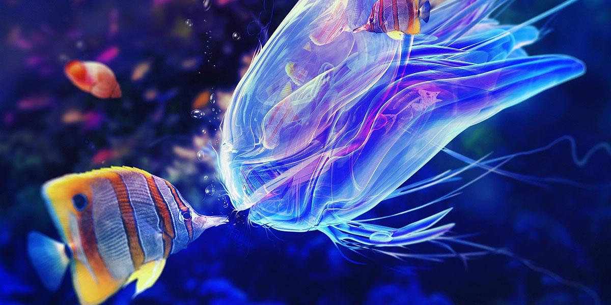 Blue Jellyfish l 300+ Muhteşem HD Twitter Kapak Fotoğrafları