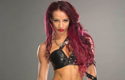 Sasha Banks Divas WWE NXT Female Wreslters wrestling