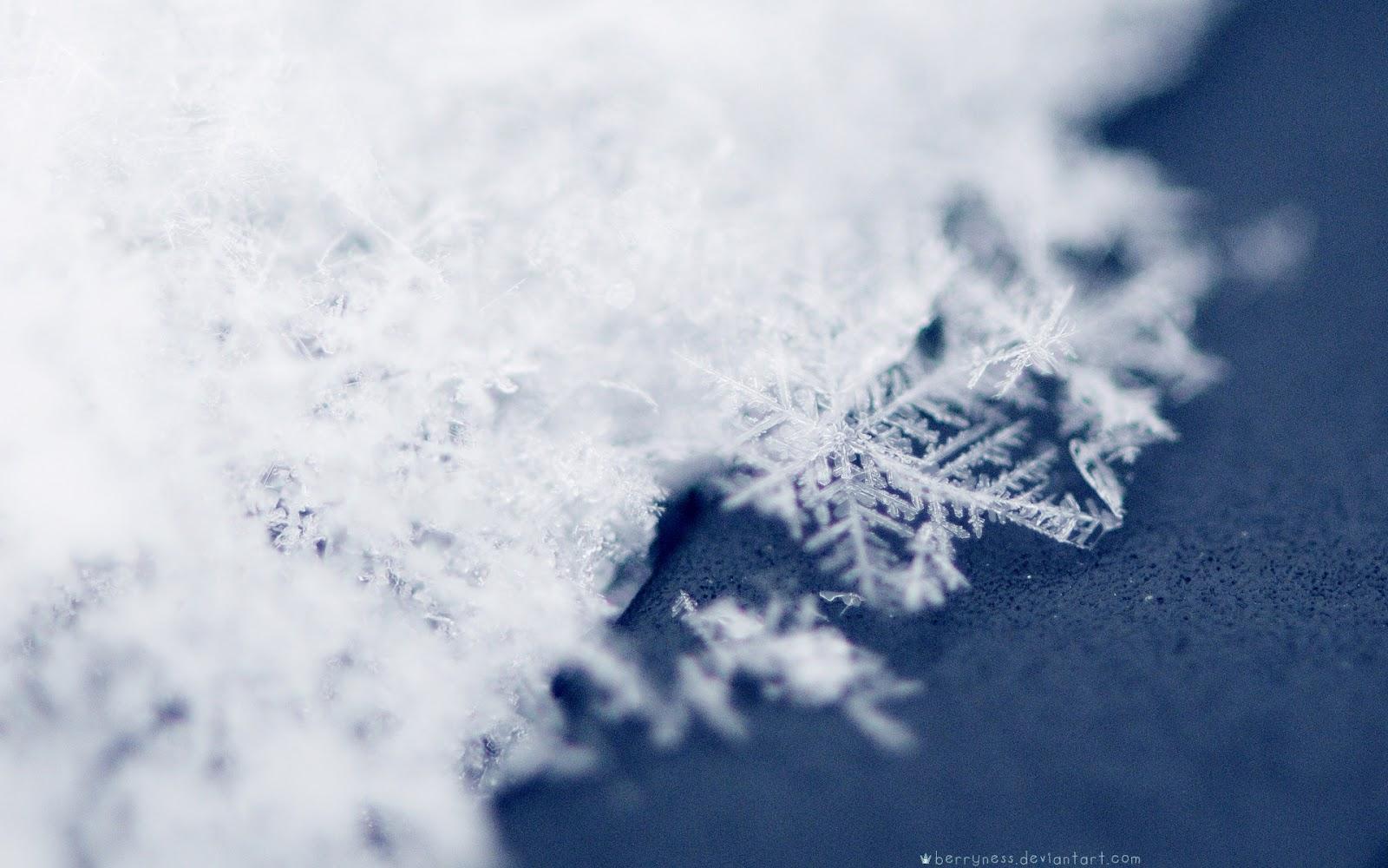 http://1.bp.blogspot.com/-0jXGChi8c9s/ULrthoFWfuI/AAAAAAAACUI/bzn4vkqUDC4/s1600/Winter+Wallpaper+(39).jpg