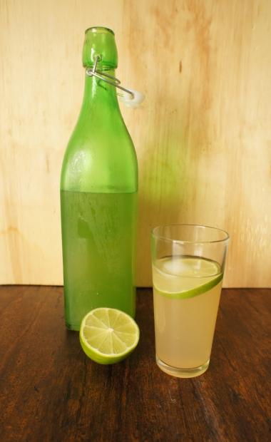 limonada com hortelã e gengibre