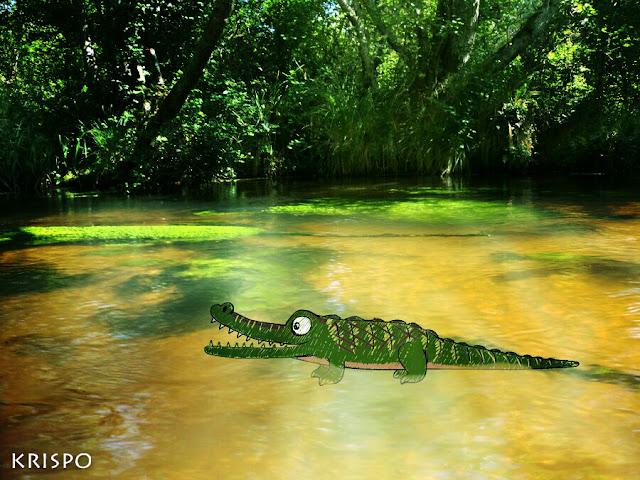 cocodrilo pintado en el lago leon
