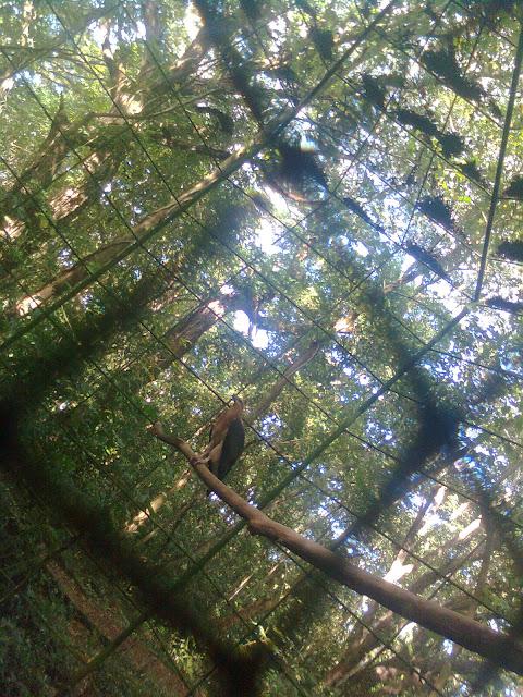 Palawan Nature Park