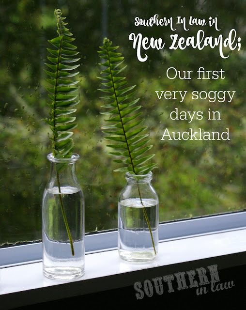 Southern In Law in New Zealand - What to do on a Rainy Day in Auckland