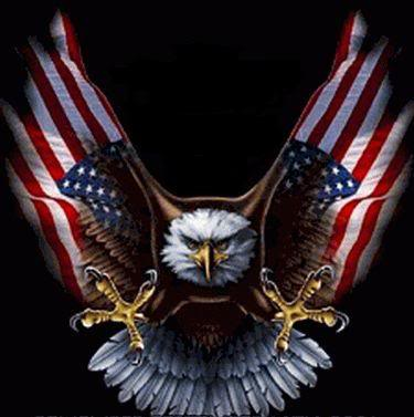 american flag eagle pictures