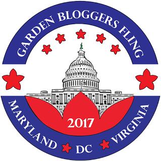 Fling 2017 DC/VA/MD