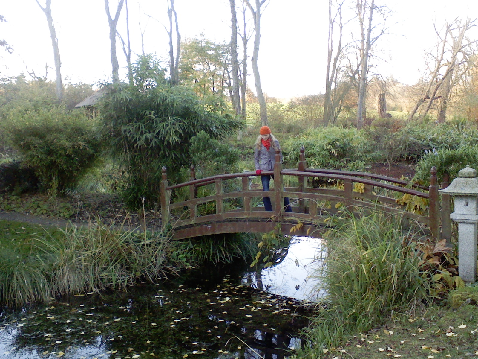 mostek, rzeczka, bridge river